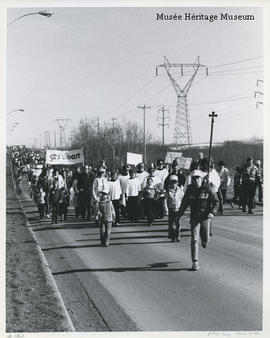 Crowd walking down Levasseur road