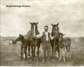 Alexander McDonald and his horses